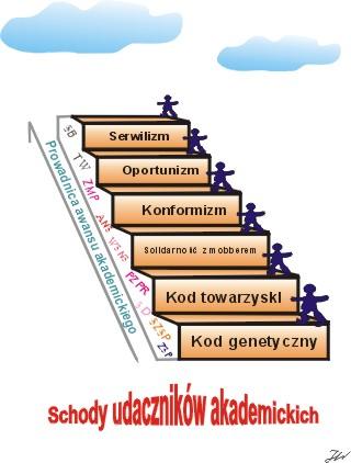schody-wstepujace1